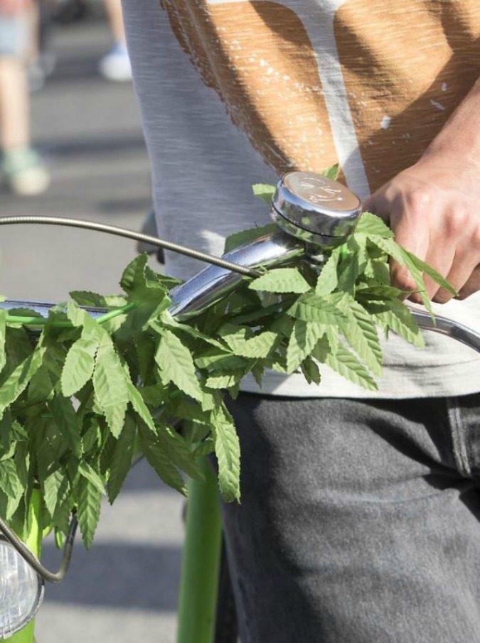 """Svizzera, marijuana libera nei negozi? No. Profuma come la """"cugina illegale"""" ma è canapa a basso contenuto di Thc"""
