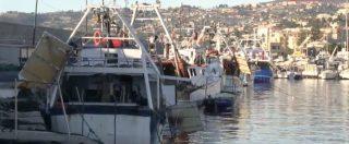 """Guerra dei gamberi in Liguria, i pescatori di confine: """"Se il Governo ratifica l'accordo con la Francia chiudiamo tutti"""""""
