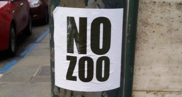 no-zoo-torino-675
