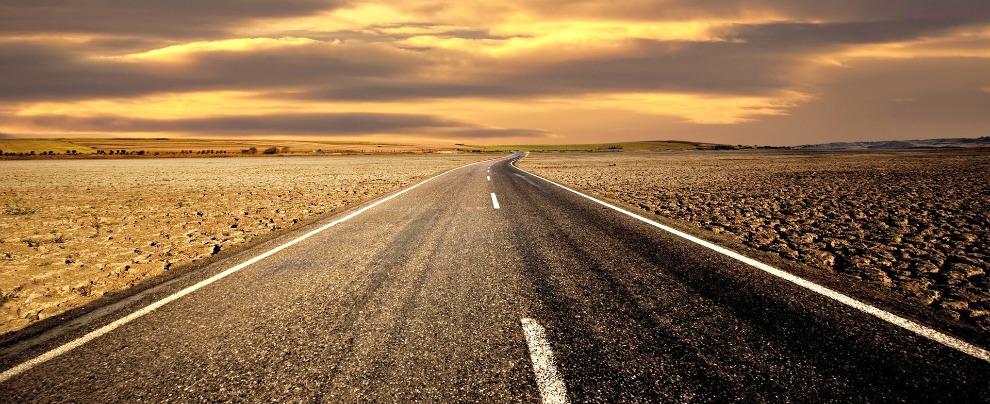 Le strade? Frammentano il territorio e mettono a rischio gli ecosistemi