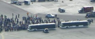 """Usa, spari in aeroporto di Fort Lauderdale (Florida). Almeno 5 morti e 8 feriti. Testimone: """"Il killer mirava alla testa"""""""