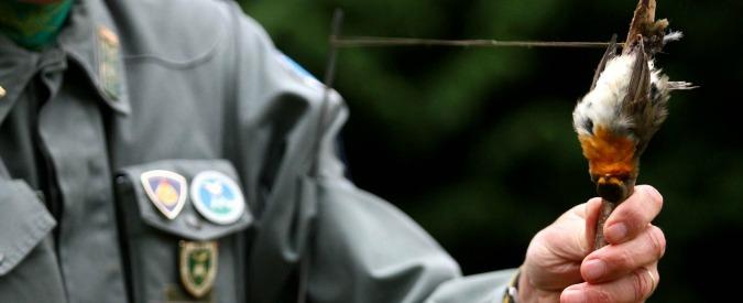 Veneto, sì a legge pro-cacciatori: multe fino a 3.600 euro a chi li ostacola. Legambiente: 'Frutto di scambi elettorali'