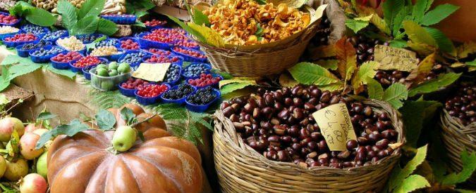 Agricoltura e biodiversità, usciamo dalla logica del prezzo più basso