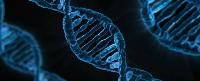 Scoperta causa di grave forma di encefalopatia da team di ricercatori italiani