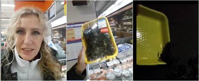 """La battaglia di Licia Colò, compra granchi vivi al supermercato e li libera in mare: """"Non è giusto"""""""