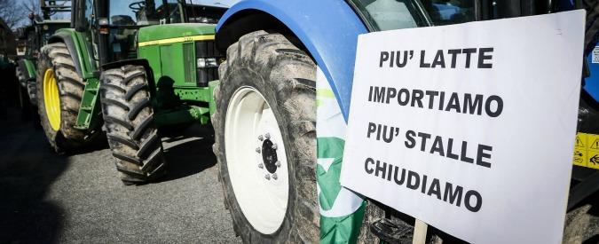 """Latte, dal 20 aprile obbligo di scrivere in etichetta il Paese di mungitura. """"Ma varrà solo per i produttori italiani"""""""