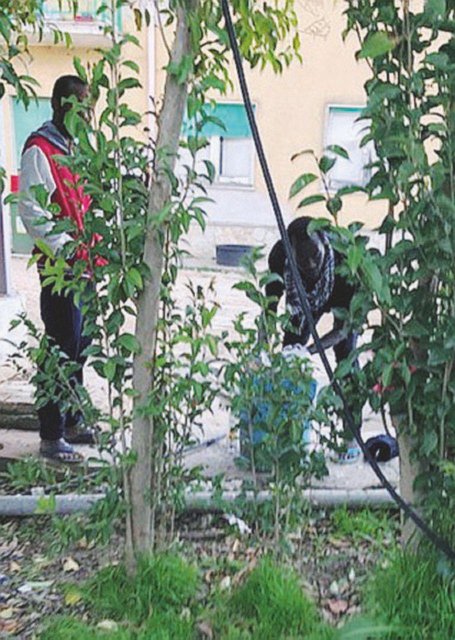 Nella masseria dei migranti scampati al rogo