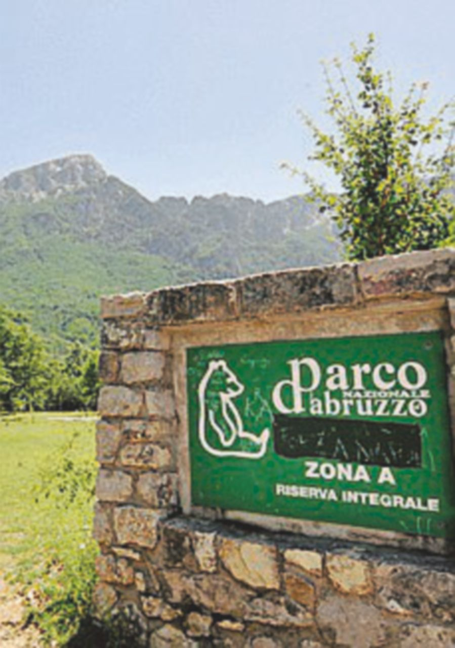 Riforma dei parchi e delle aree protette: l'appello a Gentiloni