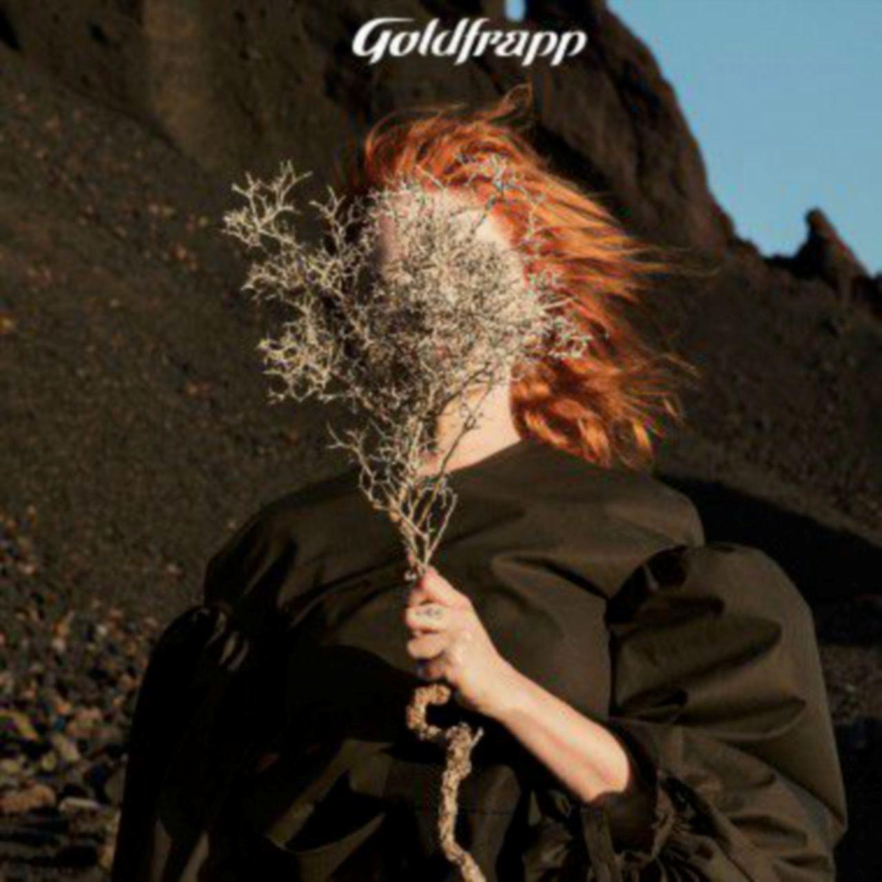 L'eclettismo indiscusso dei plurali Goldfrapp