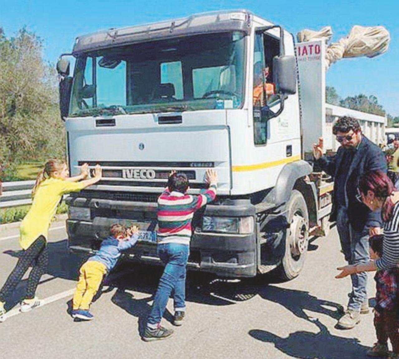 Il Tar dà ragione alla Puglia: fermato l'espianto degli ulivi