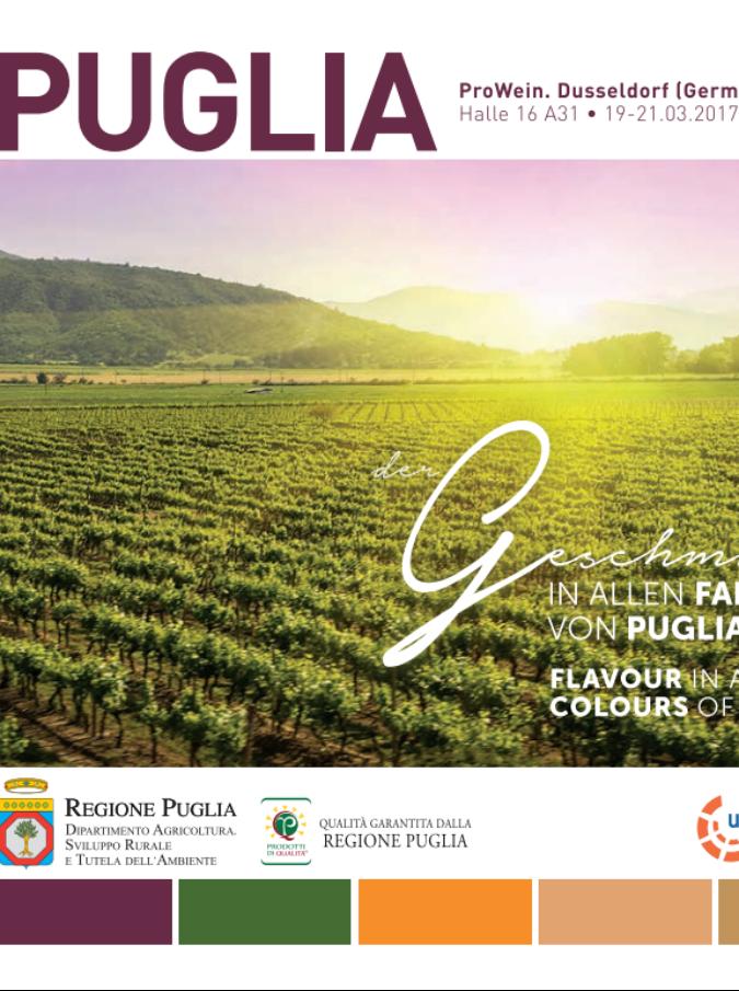Il vino pugliese presentato in Germania. Ma la brochure mostra vigne del Cile: figuraccia