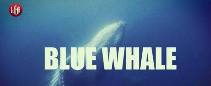Blue Whale e suicidi: prevenire si può, ma occorre 'ammalare'