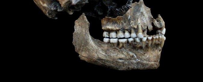 """Scienza, team di paleontologi: """"Gli uomini di Neanderthal sono stati i primi dentisti della storia: usavano ossi e fusti d'erba"""""""