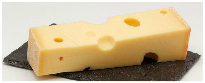 Leggere è vivere, ma non dimenticatevi il formaggio