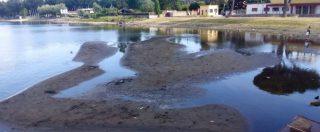Siccità, Tribunale delle acque respinge ricorso di Acea. Governo prepara decreto per evitare razionamento dell'acqua
