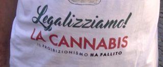 """Cannabis, i Radicali lanciano il corso itinerante di coltivazione. Magi: """"Ddl legalizzazione su un binario morto: approvarlo"""""""