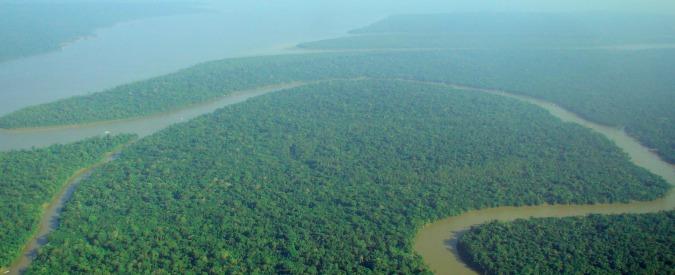 Amazzonia, come il governo brasiliano sta alimentando la deforestazione