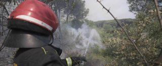 """Incendi, Legambiente: """"Emergenza del tutto prevedibile"""". In un solo mese a fuoco 26mila ettari di bosco"""