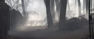 Incendi, ecco cosa resta del parco del Vesuvio dopo i roghi che hanno devastato l'area per oltre due chilometri