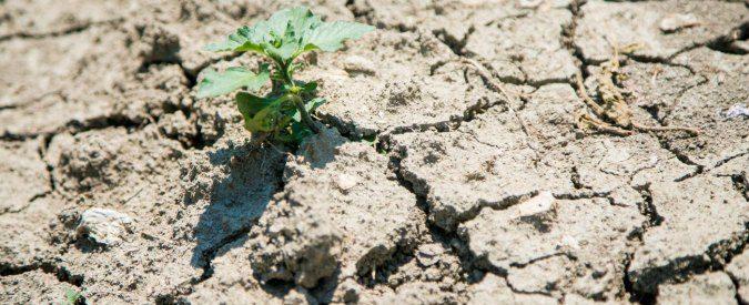 Riscaldamento globale: se il clima è già cambiato, dobbiamo imparare a conviverci