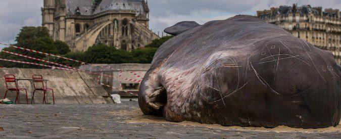 Una balena spiaggiata a Notre Dame? Chissenefrega delle provocazioni artistiche