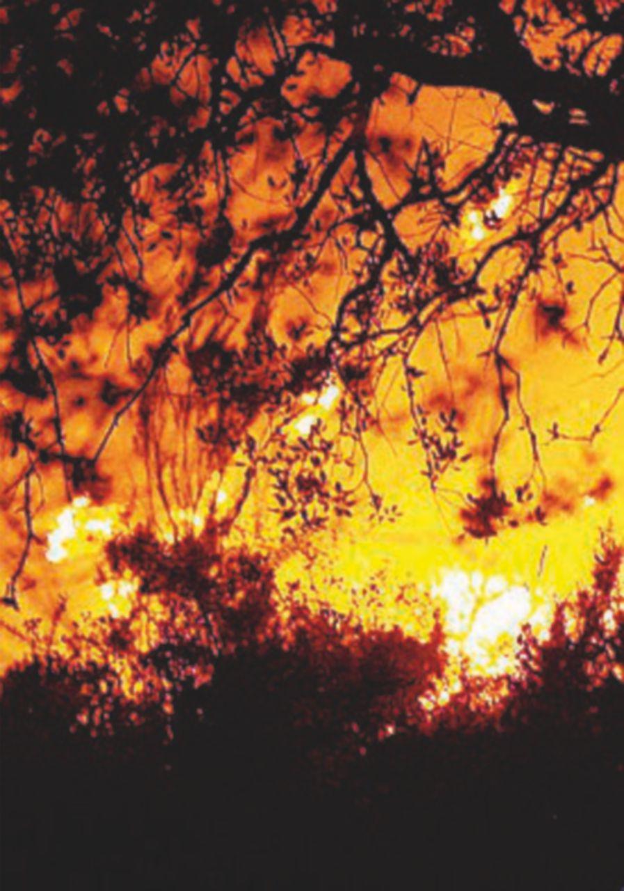 Calabria e Sardegna: ancora incendi e Canadair in azione