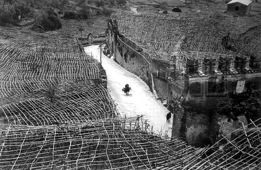 Tivoli (1959) – foto Arturo Zavattini