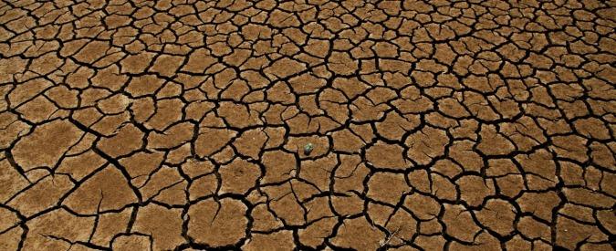 """Siccità, per combatterla un'idea made in Italy. Ecco Desert: """"Riuso dell'acqua reflua grazie ai depuratori per evitare lo spreco"""""""