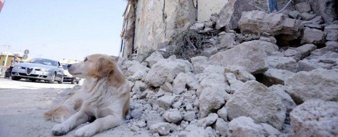 Ischia tra sisma e abusivismo, perché le cose non cambieranno
