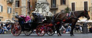 """Roma, la guerra delle botticelle arriva in Parlamento. La Lega contraria ai divieti. Prestipino (Pd): """"Sarà il Vietnam"""""""