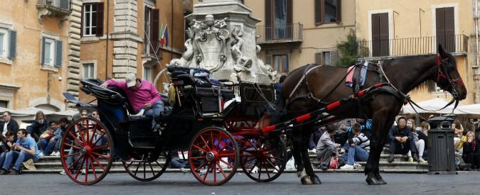 """Roma, no al transito delle botticelle in strada. Emendamento in Commissione Trasporti: """"Solo nei parchi"""""""