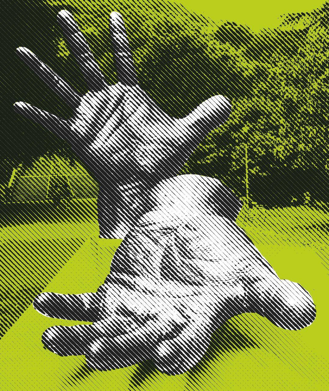 Una mano lava l'altra e tutt'e due rubano: il mondo è palese