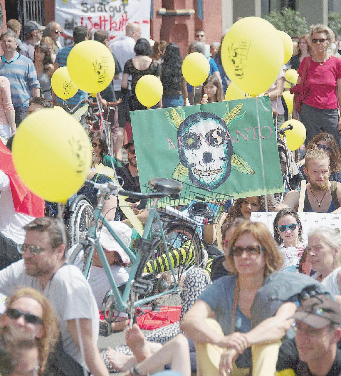 Ogm, la Corte Ue boccia i divieti imposti dall'Italia