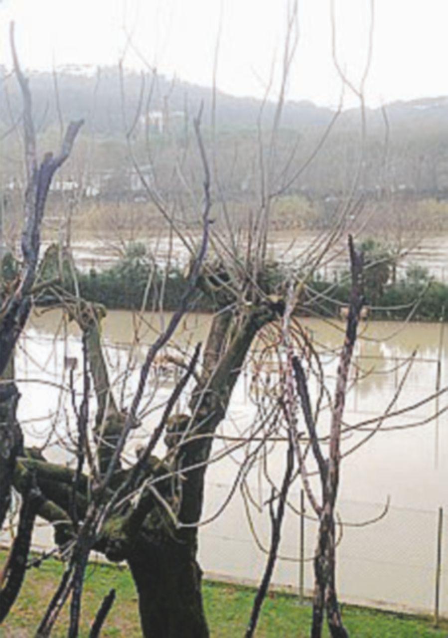 """Tevere, lettera a Raggi """"Rischio alluvioni per 250 mila romani"""""""