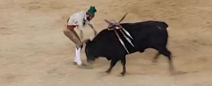 Tragedia nell arena  sfida il toro a mani nude ma viene caricato. Morto il  26enne Fernando Quintela - Il Fatto Quotidiano 752bdfb60a2c