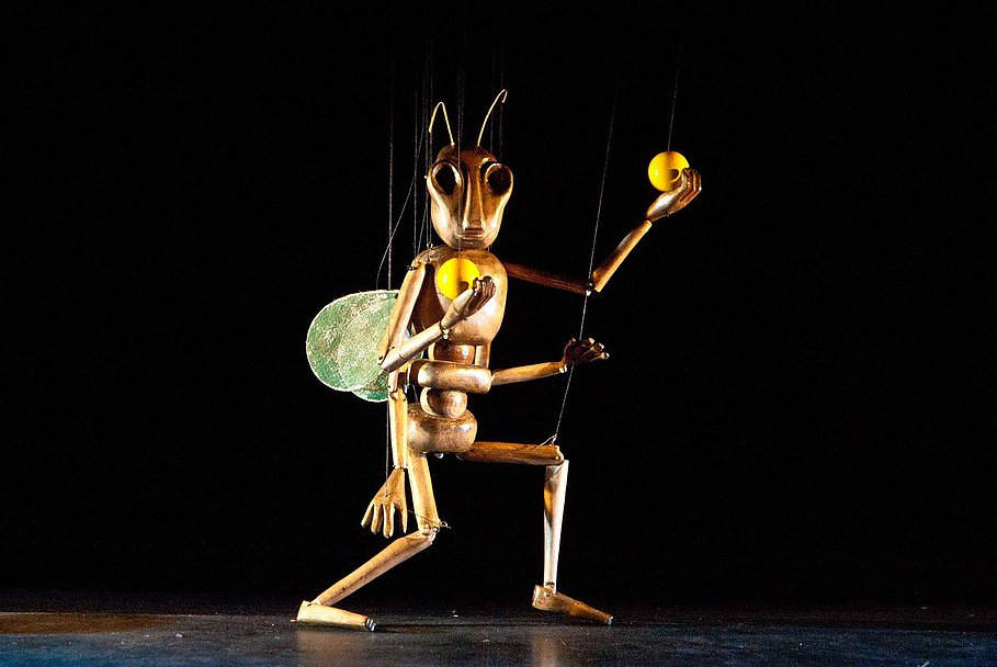 String-Theater-THE-INSECT-CIRCUS