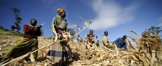 Se il cambiamento climatico fa crescere la fame nel mondo