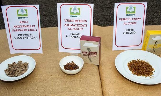 Vermi alla paprika e farfalle fritte: Coldiretti denuncia la legge che porta gli insetti sulle tavole italiane