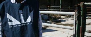 'Ndrangheta in Emilia, truffa al Tesoro: la Dia sequestra beni per 2,3 milioni di euro