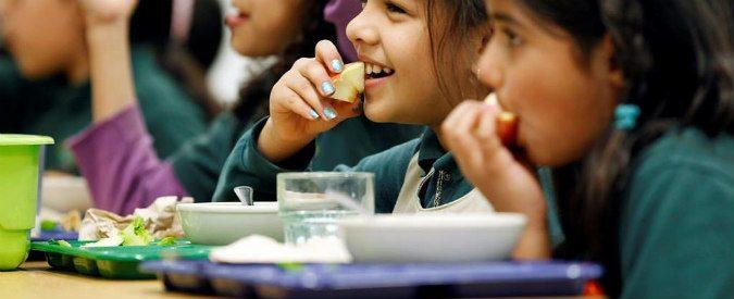 Mense scolastiche, se c'è una blatta nel panino la colpa non è di chi l'ha preparato