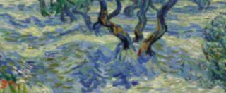 """Van Gogh, nel suo famosissimo """"Olive Trees"""" c'è una cavalletta intrappolata (da 128 anni)"""
