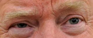 """Usa, """"Quella cagata del riscaldamento globale"""". Il bestiario delle strampalate dichiarazioni di Trump sul clima"""