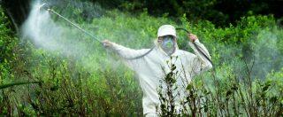 """Pesticidi, Legambiente: due alimenti su tre presentano tracce ma sono """"regolari"""". Le norme ignorano casi di multiresiduo"""
