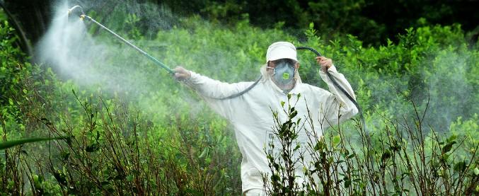 Pesticidi, la marcia per la messa al bando. Ambientalisti contro il riconoscimento dell'Unesco alle colline del Prosecco