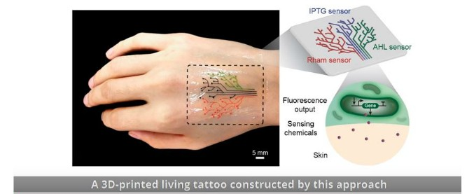 """Tatuaggi, ecco quelli """"viventi"""" in 3D che si illuminano"""