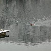 Il lago Hecht è balneabile…perfino d'inverno.