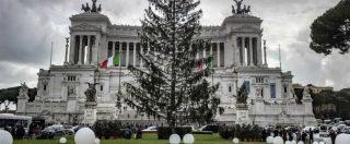 """Roma, Comune: """"Spelacchio è morto"""". L'azienda che ha fornito l'albero di Natale: """"Da qui è partito in salute"""""""