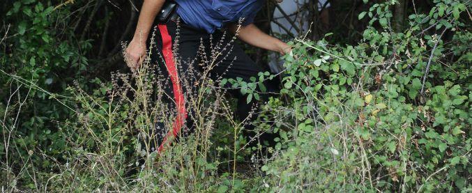 'Ndrangheta, agguato a Seminara: ucciso pregiudicato, grave un bimbo di 10 anni