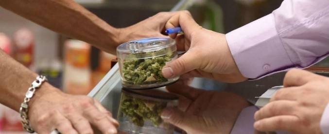 """Cannabis terapeutica, storie dei malati costretti a ingegnarsi: """"In Italia quantità insufficienti e in tempi biblici"""""""