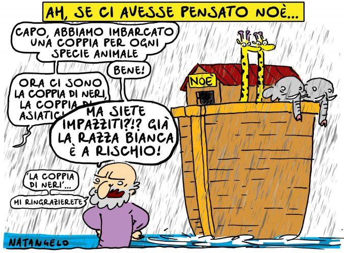 Intanto, Noé…